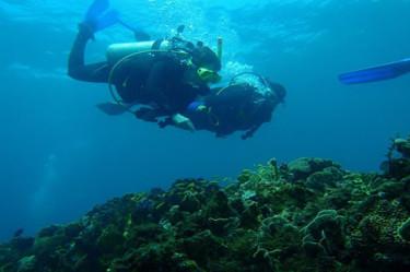 scuba diving portobelo