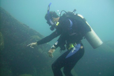 diving pacific panama